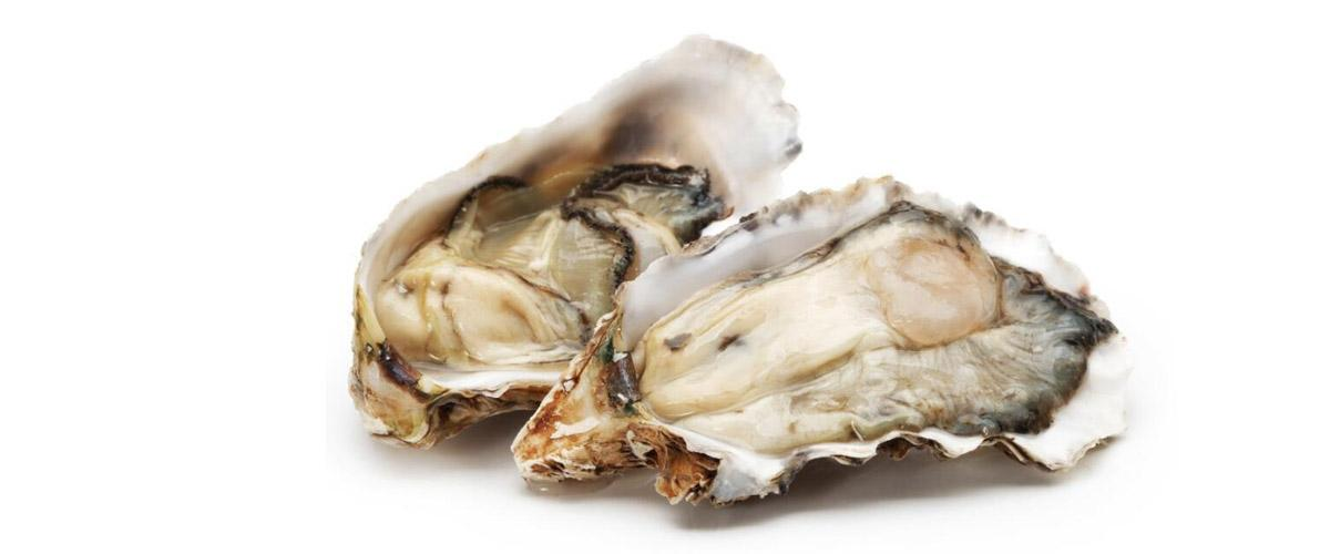 Can oyster peptides really improve male function 4