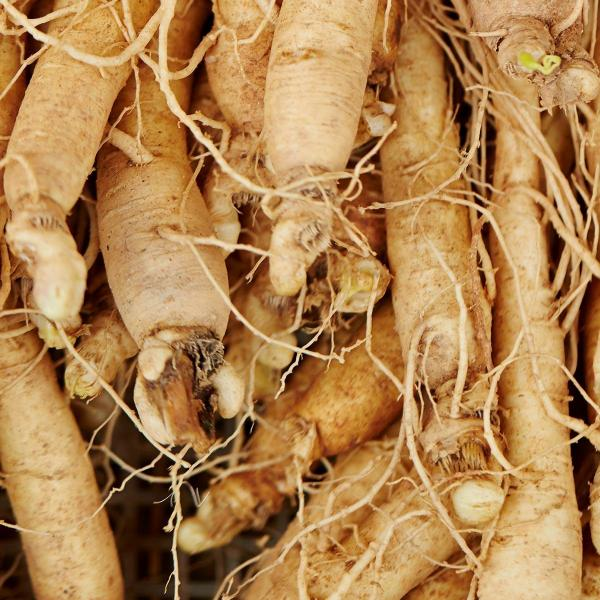 Ginseng sperm quality and quantity
