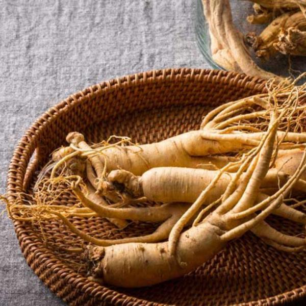 Ginseng to treat varicocele naturally