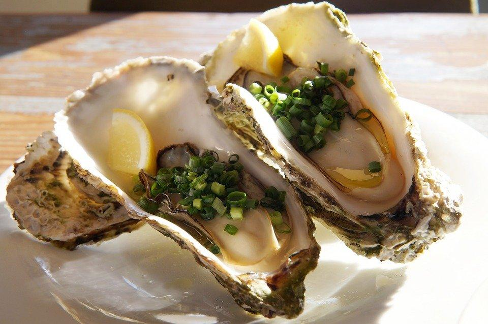 Oyster male function
